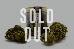 hawaiian haze hemp flower sold out